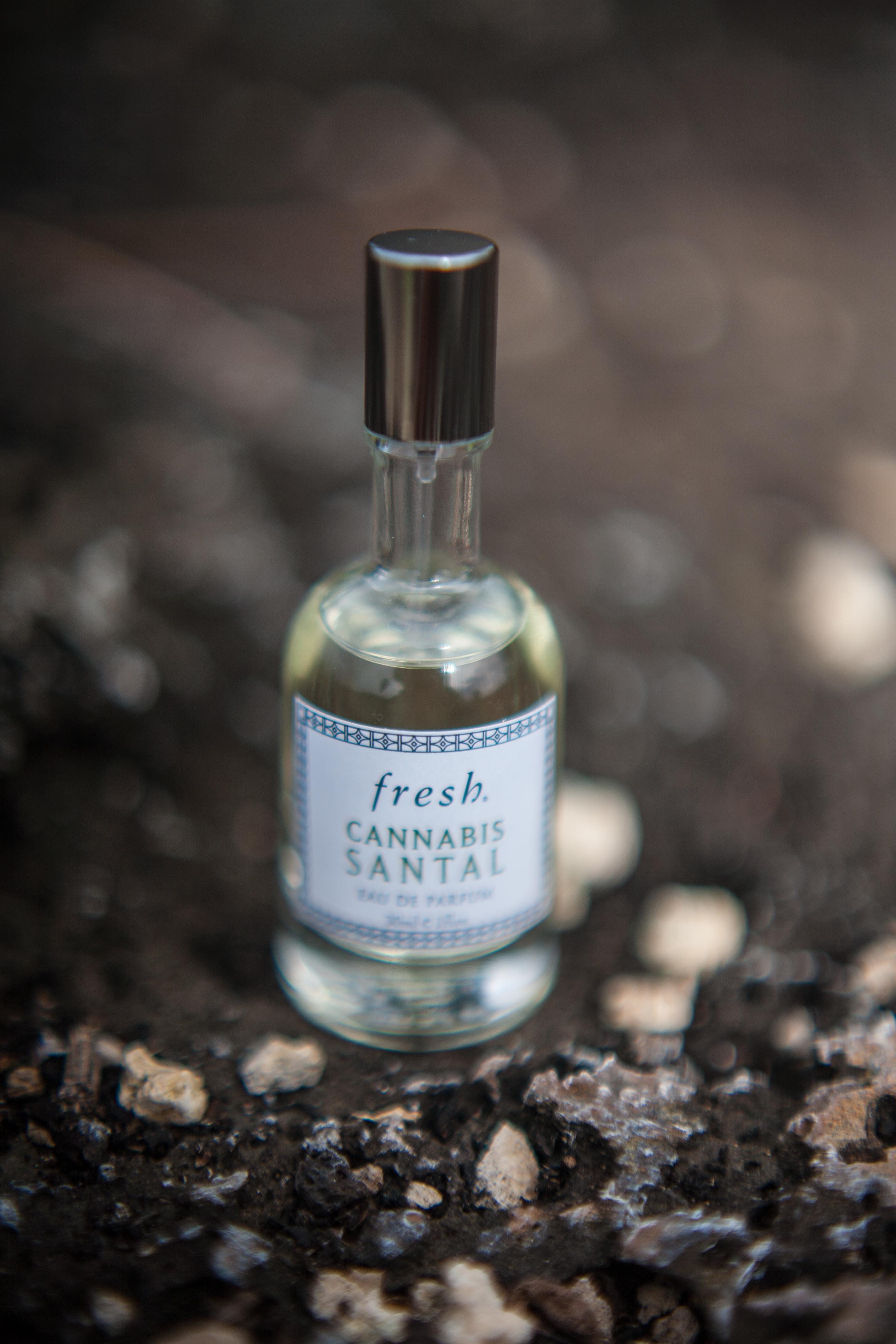 Kraftfull wood-doft från Fresh - Cannabis Santal