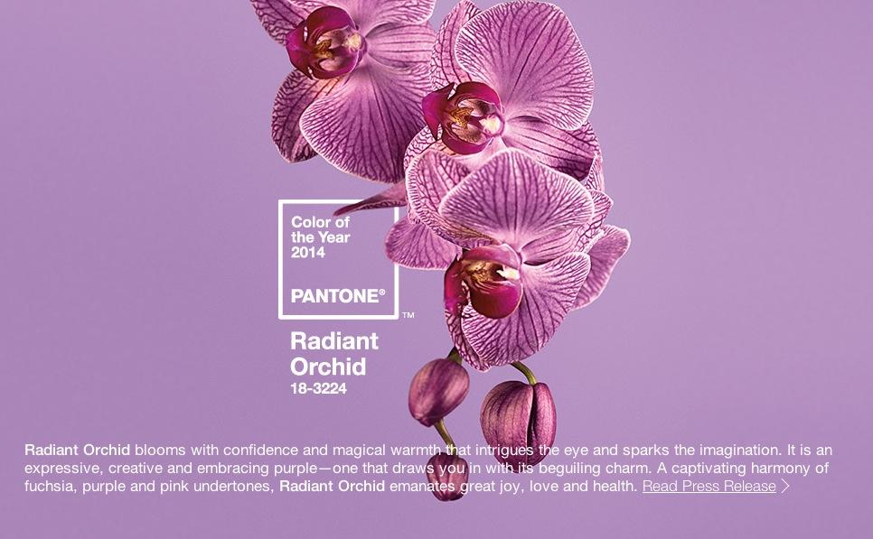 Årets färg enligt Pantone: Radiant Orchid