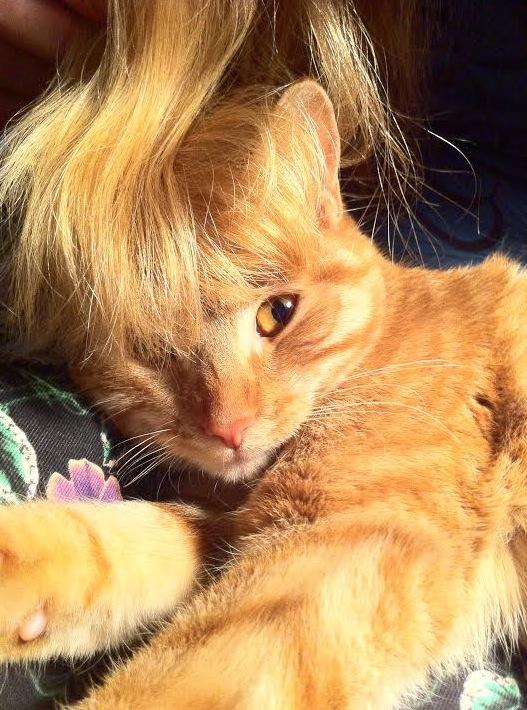 Nu har jag och Zezar samma hårfärg!