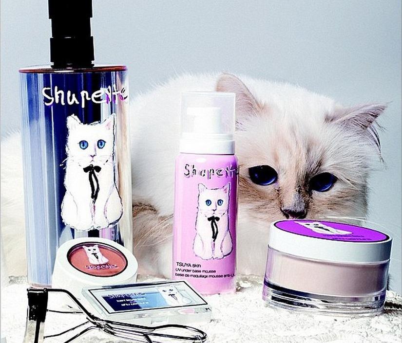 Shu Uemura lanseras under hösten i Shu Uemuras butiker och utvalda försäljare. Dock inte i Sverige:(