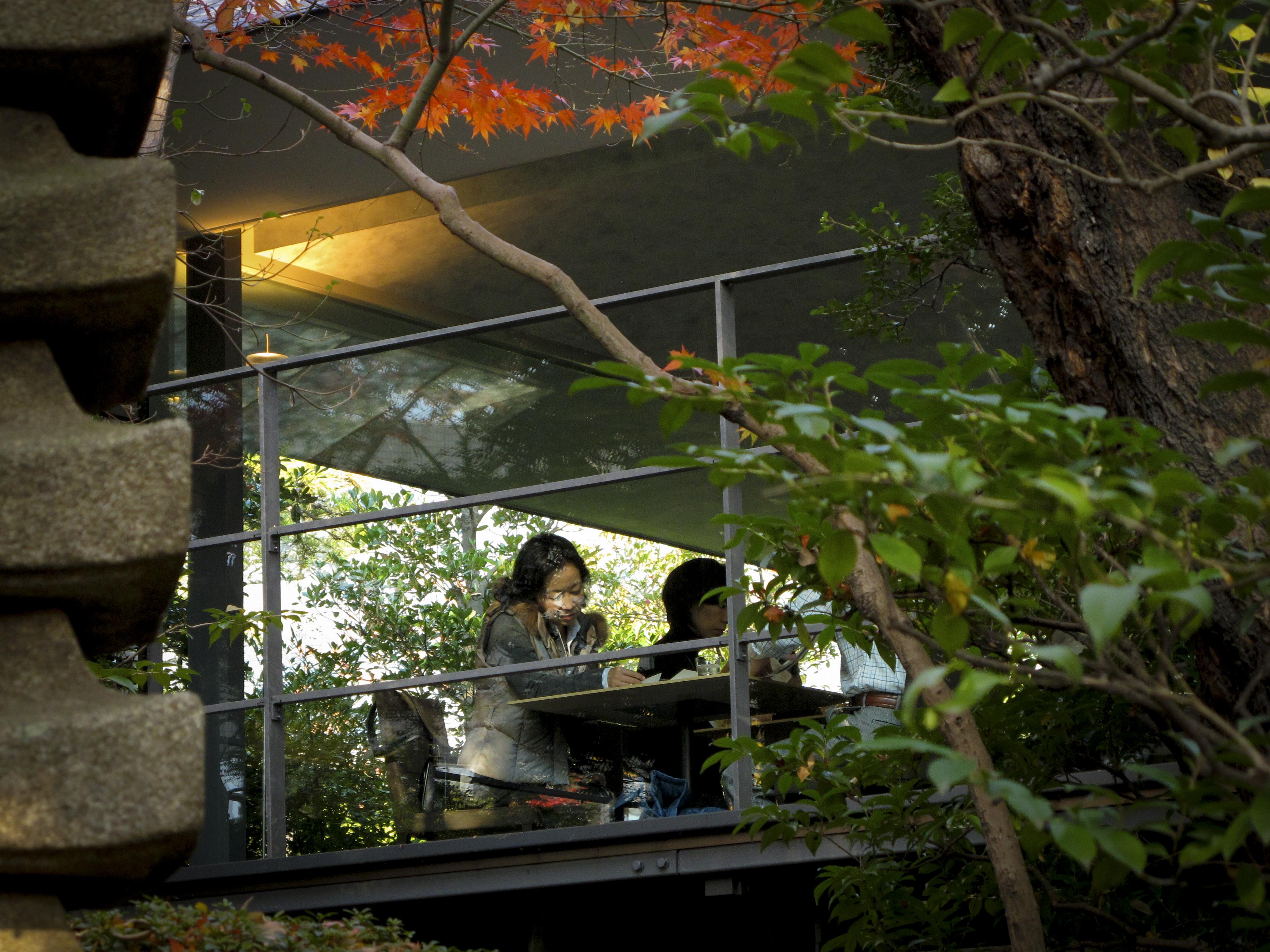 Sugen på bra grönt te i Japan. Besök Nezu museums cafe som svävar ovanför trädtoparna i Nezu Park, Toky. Fler restips får du i min nyutgivna Tokyoguide för Aftonbladet.