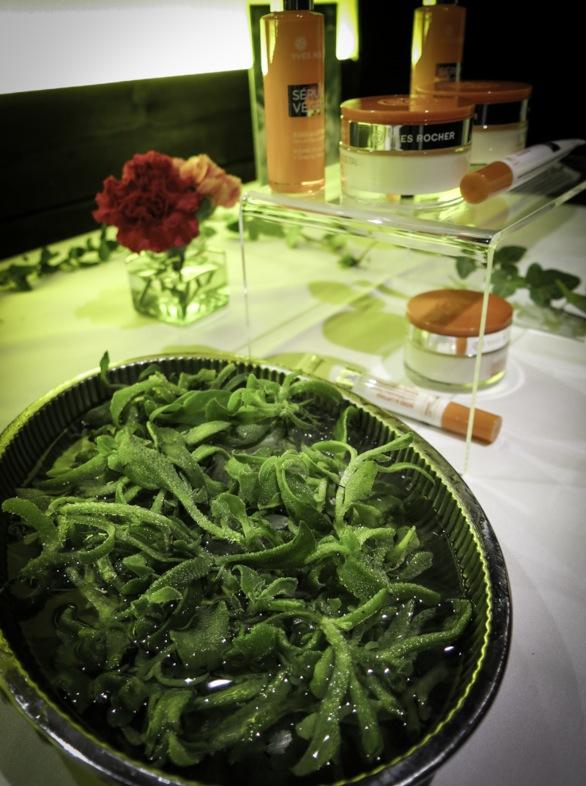 Isört på Yves Rochers senaste pressvisning av produkterna Serum Vegetal