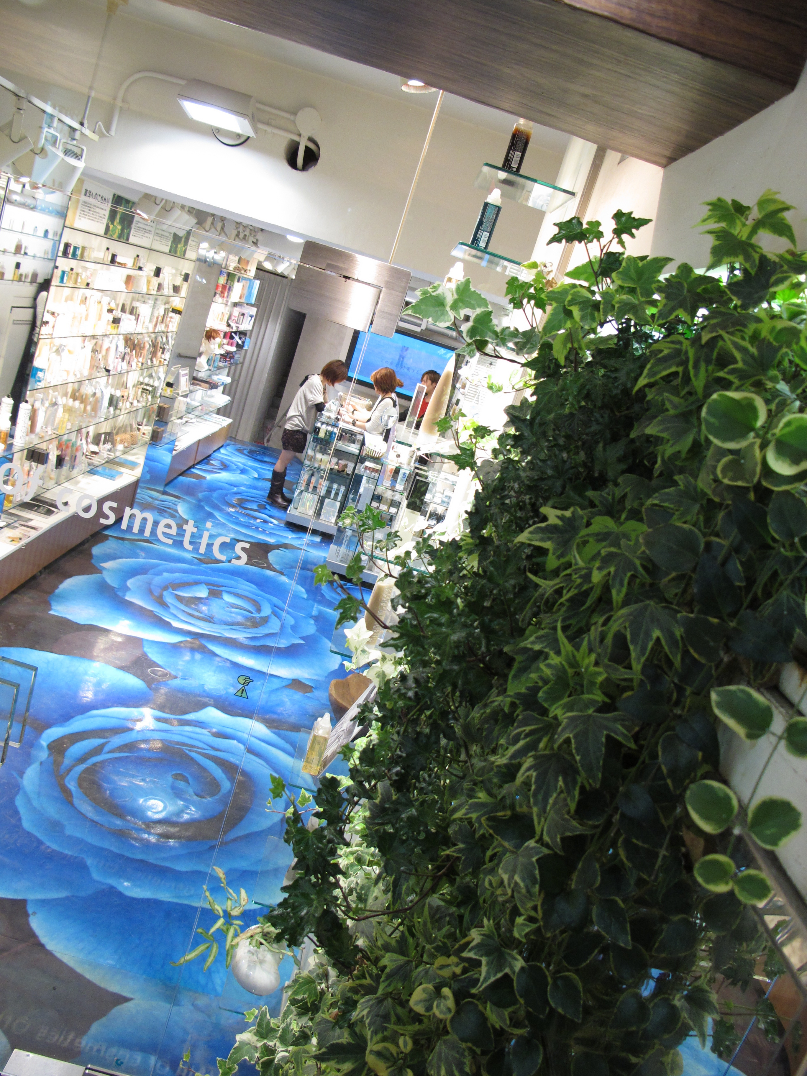 Of Cosmetics  etablerades 2000 i Japan och är ett hår och hudvårdsmärke.