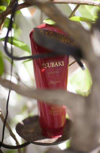 Shiseidoprodukter i Japan är något helt annat än det Shiseido vi ser i Europa. Tyvärr. Håll ögonen öppna efter den här gobiten om du är i Asien. Tsubaki hårbalsam. mumma för håret