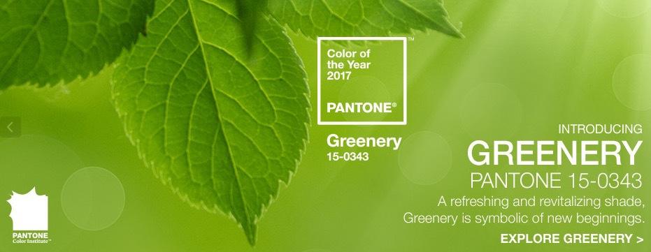 pantone-46