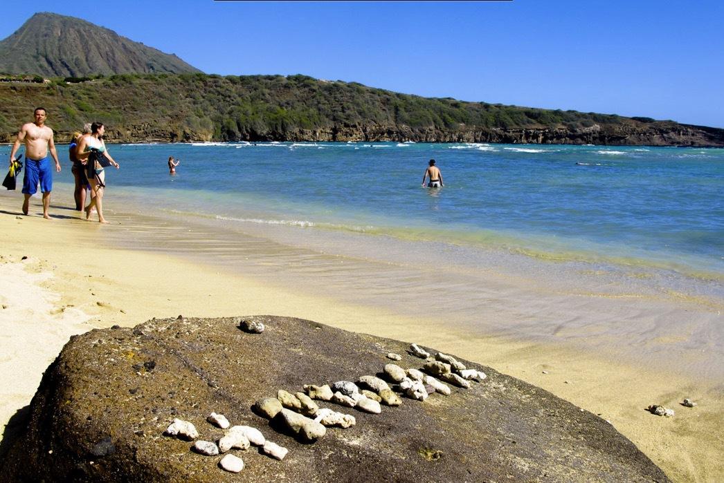 Hanauma beach nordöst om Waikiki har speciella föreskrifter att följa på grund av der rika djurlivet under ytan.