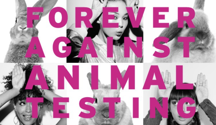 I Oktober kommer Cruelty International tillsammans med The Body shop att lämna in en namninsamling till FN med ett förslag om globalt förbud mot djurförsök. Hittills har 7 miljoner skrivit på. Skriv på du också!